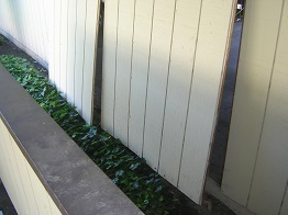 Wood siding repair