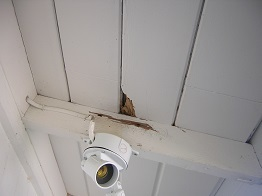 how to repair termite damage